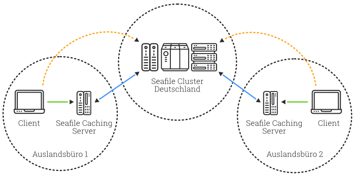seafile proxy diagramm